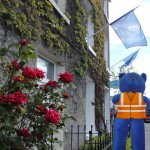 Tidy Towns Clean up Insurance